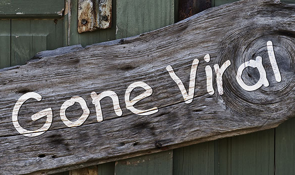 5 Step Guide for Creating Viral Content