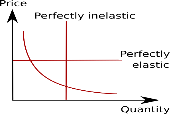 Price Elasticity Analysis