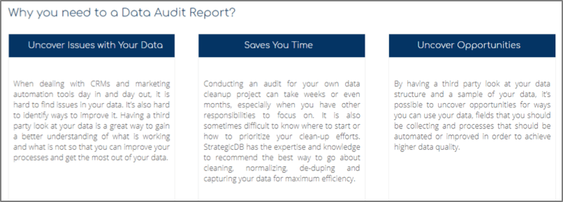 data audit report