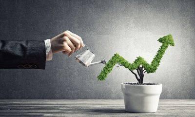 make-your-small-business-go-big