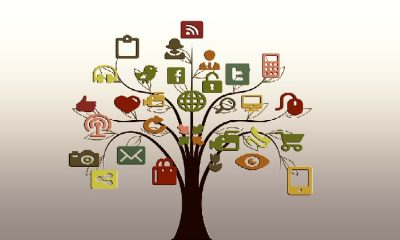 Social-Media-to-Improve-Your-SEO